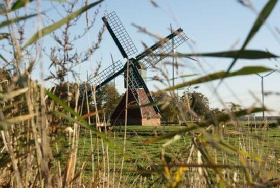 Alte und neue Mühlen bestimmen das Ortsbild in Riepe