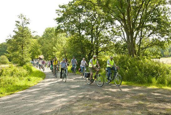 Eine schöne Radtour durch Ihlow